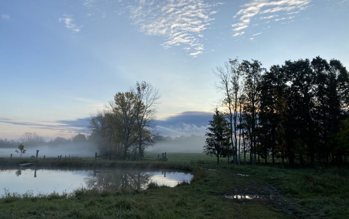 mist rising from pond with mountains in background