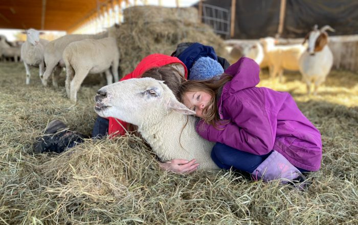 girls cuddling ewe in barn