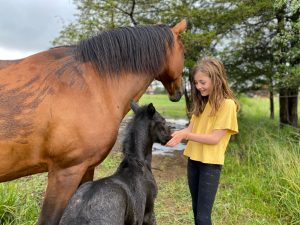 girl greeting mare and new foal